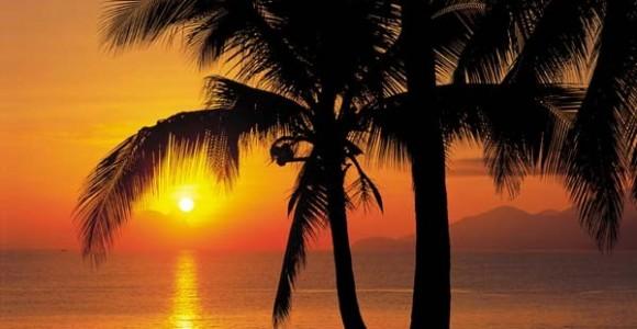 Komar-Palmy-Beach-Sunrise